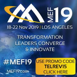 MEF 19
